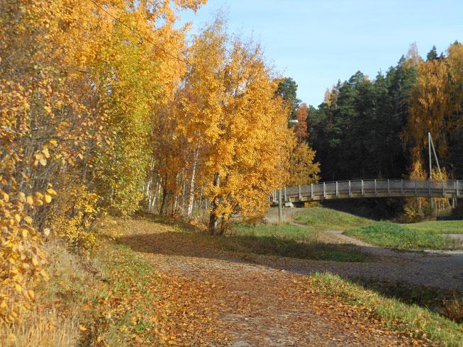 131014_autumn